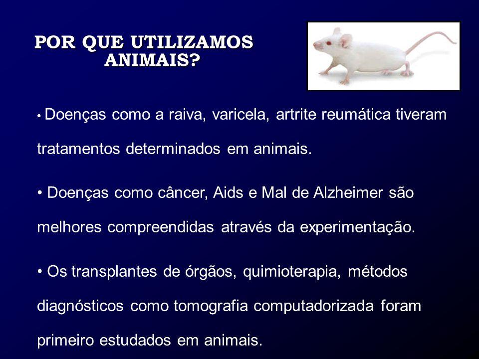 POR QUE UTILIZAMOS ANIMAIS