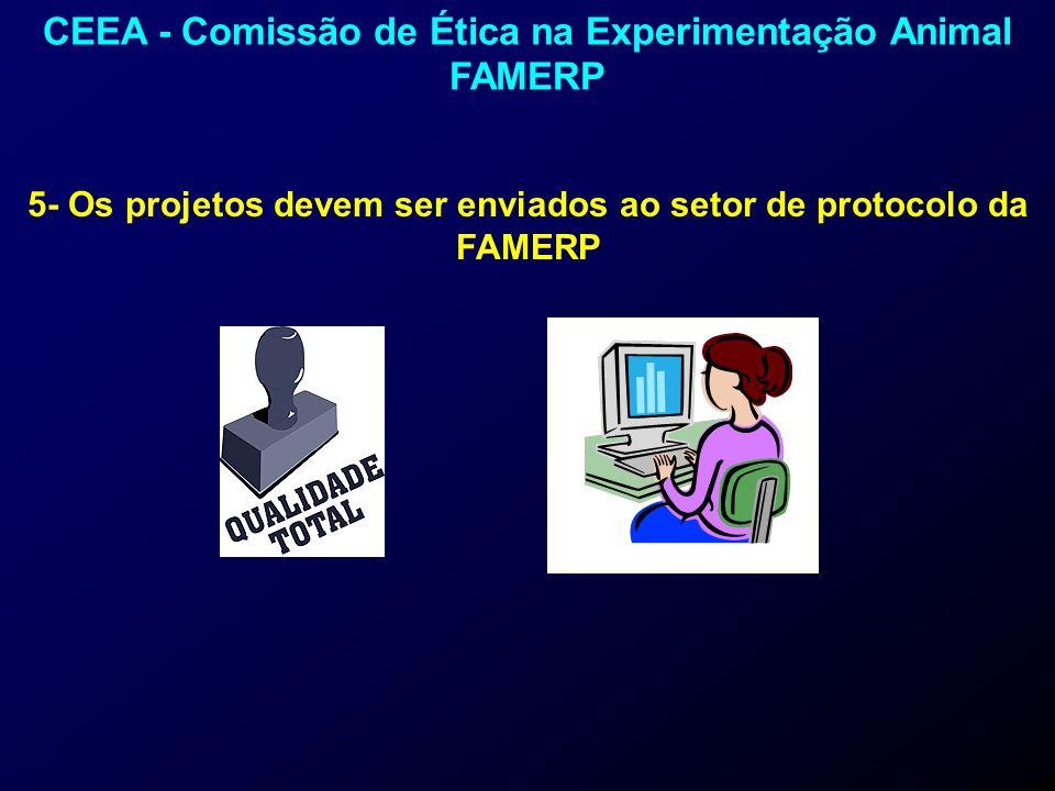 5- Os projetos devem ser enviados ao setor de protocolo da FAMERP