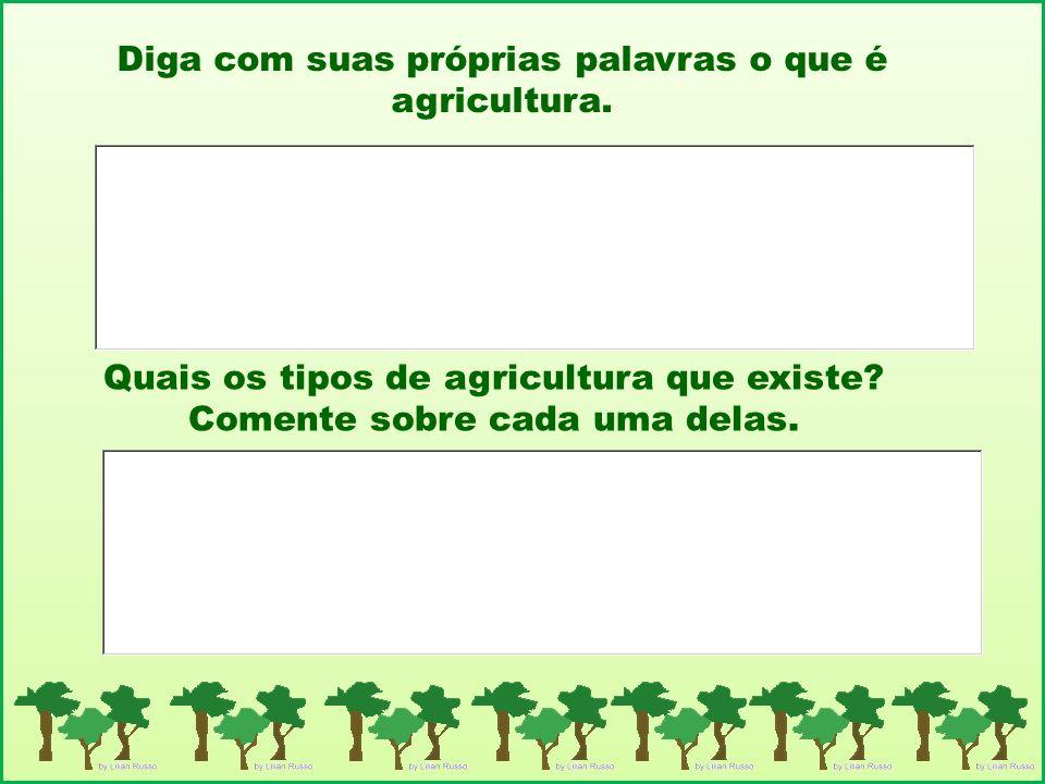 Diga com suas próprias palavras o que é agricultura.