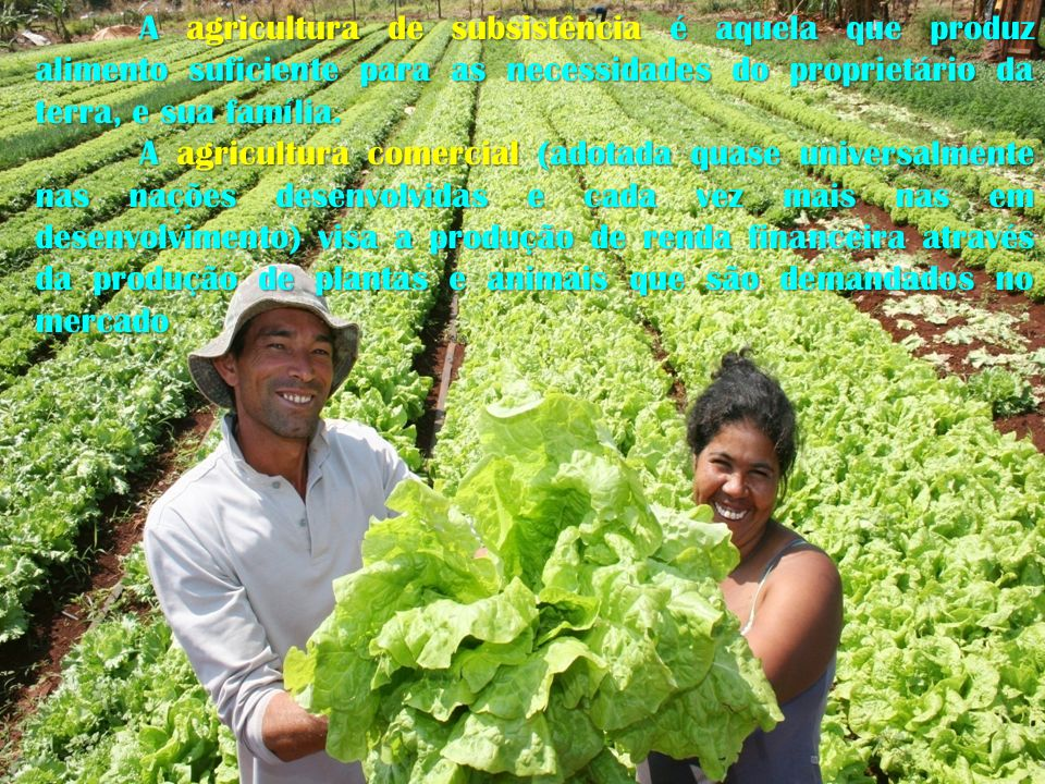 A agricultura de subsistência é aquela que produz alimento suficiente para as necessidades do proprietário da terra, e sua família.