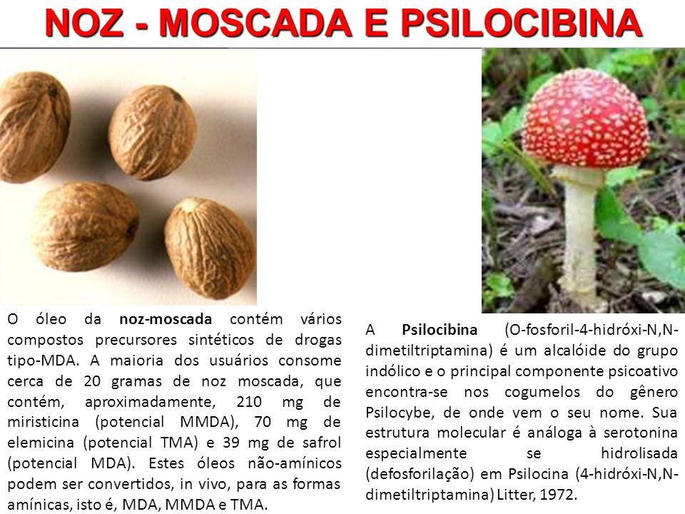 NOZ - MOSCADA E PSILOCIBINA