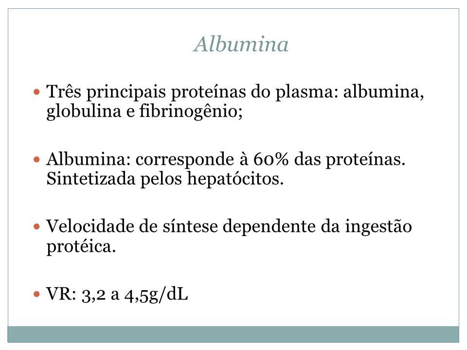 Albumina Três principais proteínas do plasma: albumina, globulina e fibrinogênio;
