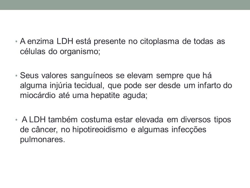 A enzima LDH está presente no citoplasma de todas as células do organismo;