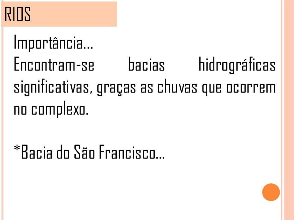 RIOS Importância... Encontram-se bacias hidrográficas significativas, graças as chuvas que ocorrem no complexo.