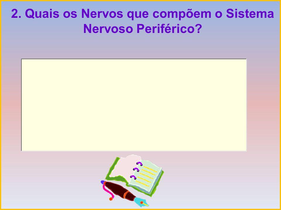 2. Quais os Nervos que compõem o Sistema Nervoso Periférico