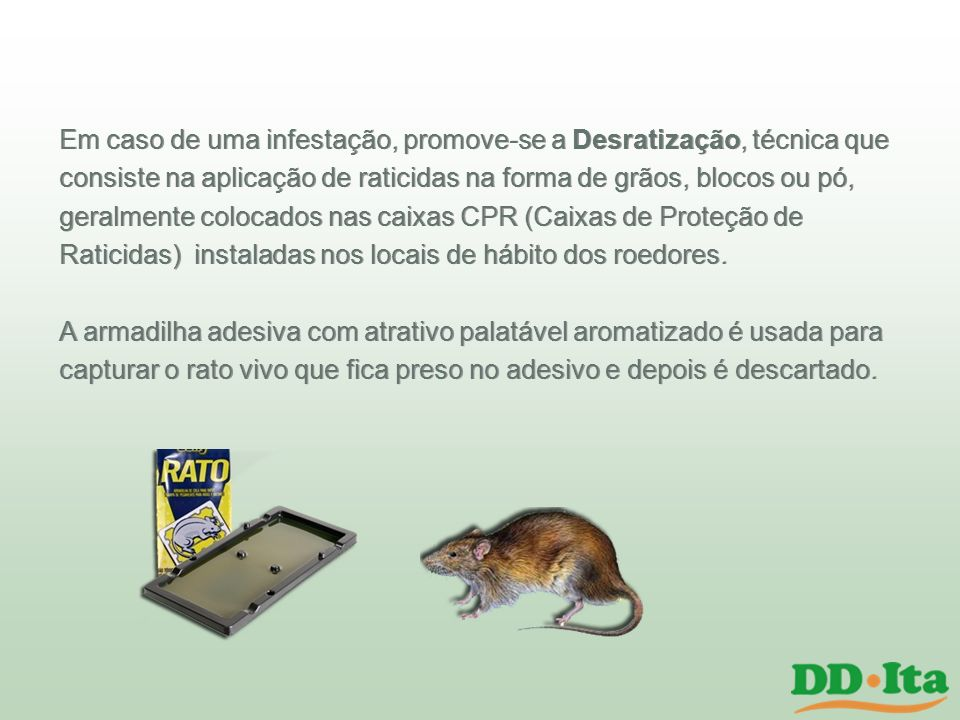 Em caso de uma infestação, promove-se a Desratização, técnica que