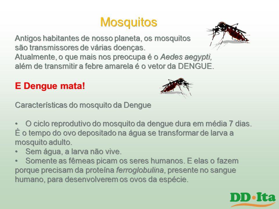 Mosquitos E Dengue mata!