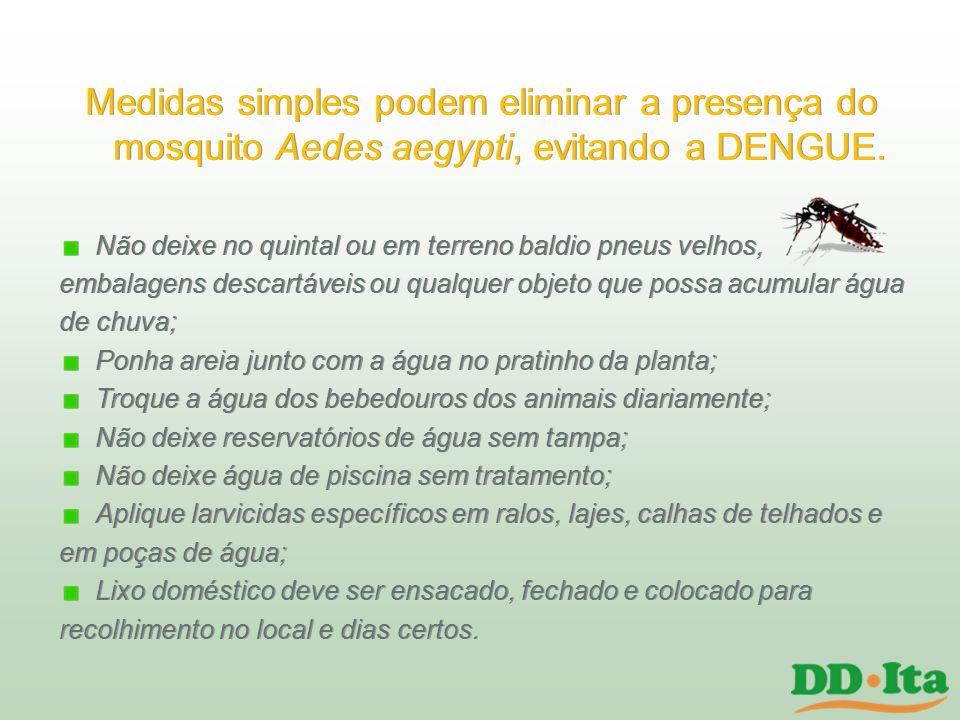 Medidas simples podem eliminar a presença do mosquito Aedes aegypti, evitando a DENGUE.