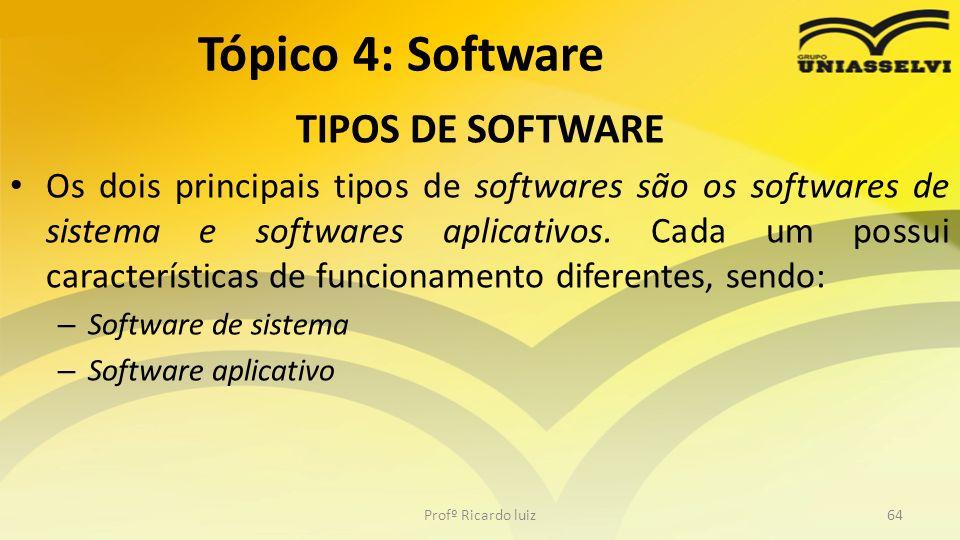 Tópico 4: Software TIPOS DE SOFTWARE
