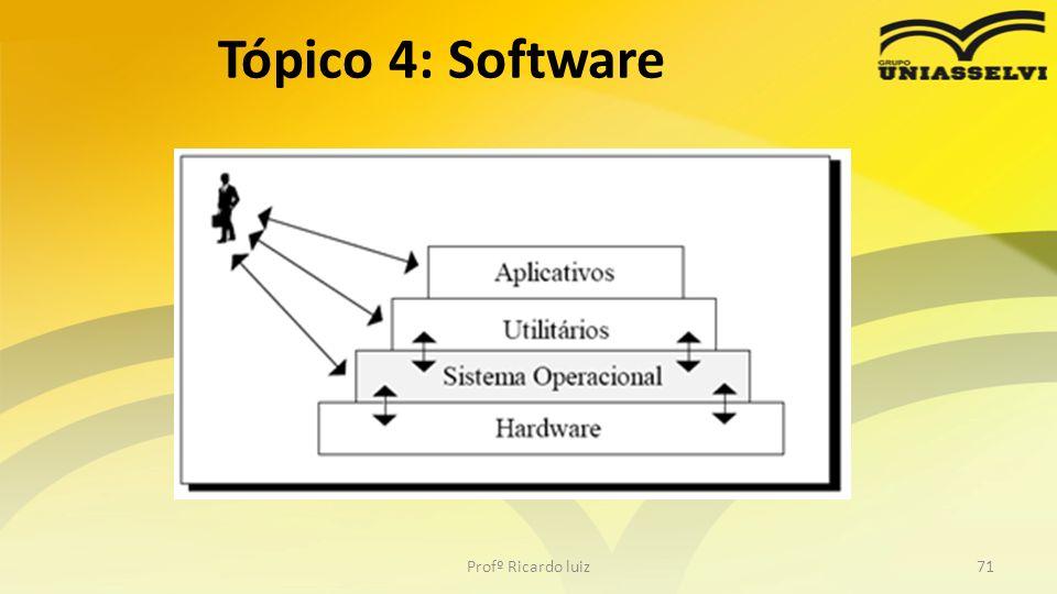 Tópico 4: Software Profº Ricardo luiz