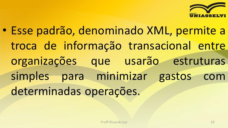 Esse padrão, denominado XML, permite a troca de informação transacional entre organizações que usarão estruturas simples para minimizar gastos com determinadas operações.