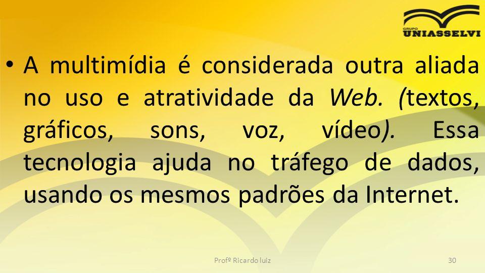 A multimídia é considerada outra aliada no uso e atratividade da Web