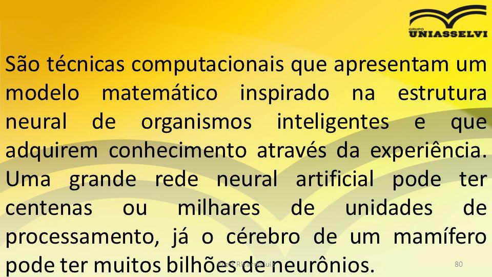 São técnicas computacionais que apresentam um modelo matemático inspirado na estrutura neural de organismos inteligentes e que adquirem conhecimento através da experiência. Uma grande rede neural artificial pode ter centenas ou milhares de unidades de processamento, já o cérebro de um mamífero pode ter muitos bilhões de neurônios.