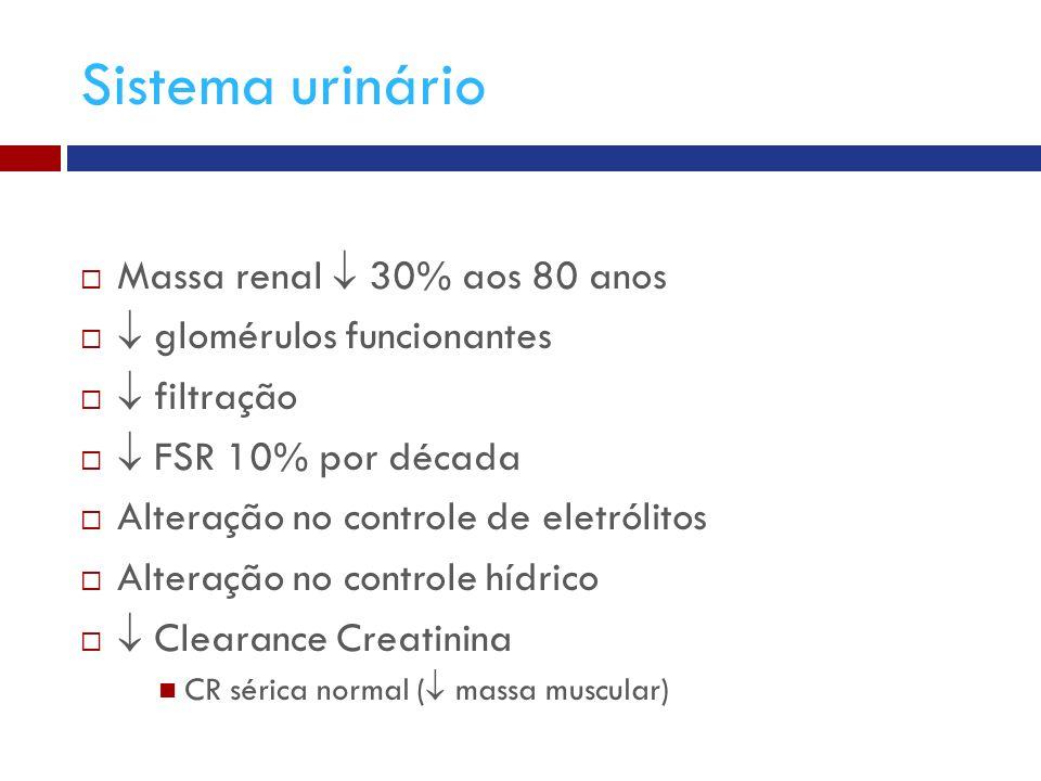 Sistema urinário Massa renal  30% aos 80 anos