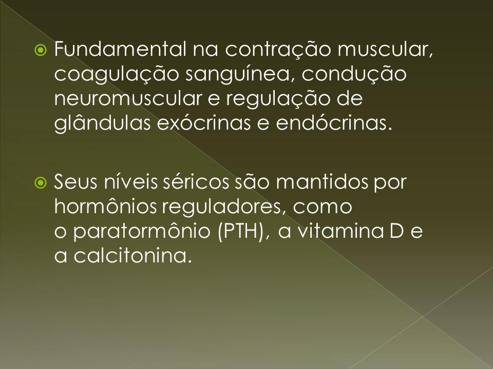 Fundamental na contração muscular, coagulação sanguínea, condução neuromuscular e regulação de glândulas exócrinas e endócrinas.