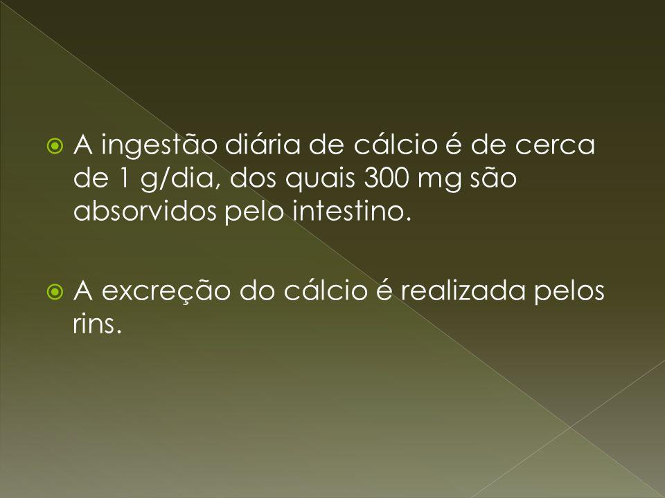 A ingestão diária de cálcio é de cerca de 1 g/dia, dos quais 300 mg são absorvidos pelo intestino.