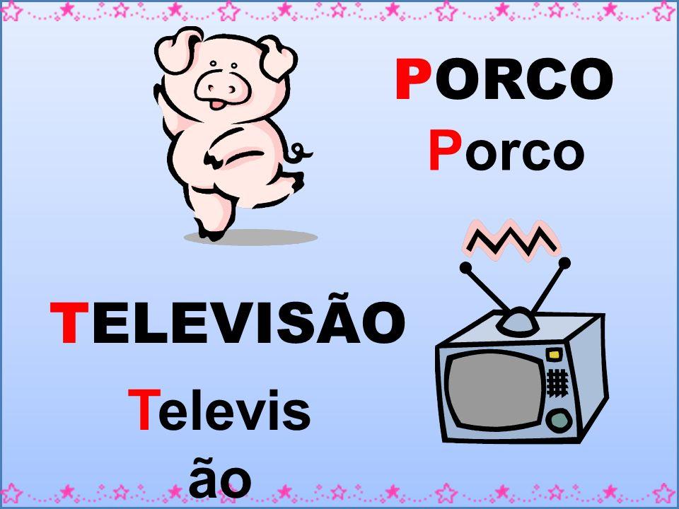 PORCO Porco TELEVISÃO Televisão