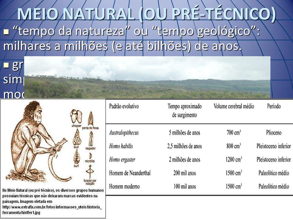MEIO NATURAL (OU PRÉ-TÉCNICO)