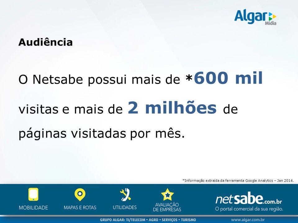 Audiência O Netsabe possui mais de *600 mil visitas e mais de 2 milhões de páginas visitadas por mês.