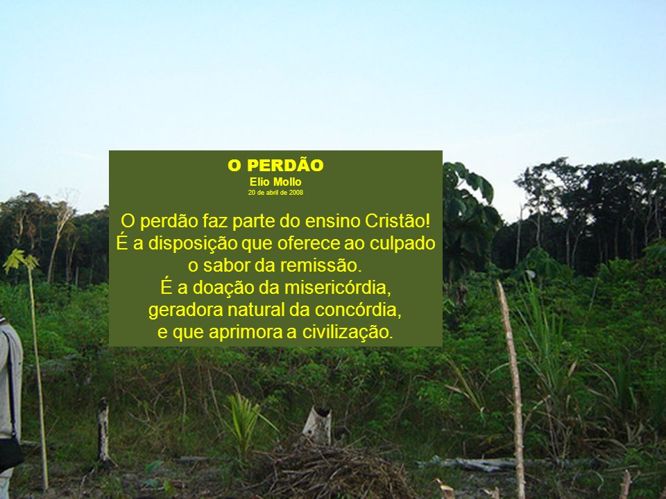 O PERDÃO Elio Mollo. 20 de abril de 2008.