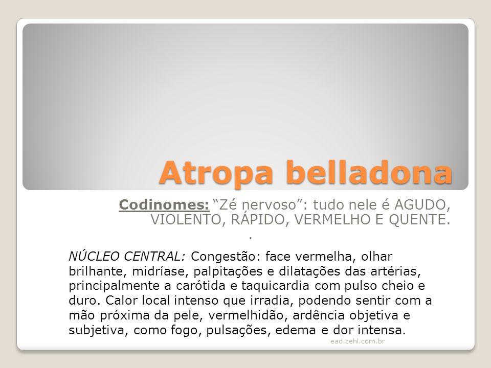 Atropa belladona Codinomes: Zé nervoso : tudo nele é AGUDO, VIOLENTO, RÁPIDO, VERMELHO E QUENTE. .