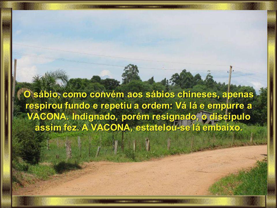 O sábio, como convém aos sábios chineses, apenas respirou fundo e repetiu a ordem: Vá lá e empurre a VACONA.