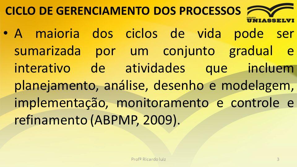 CICLO DE GERENCIAMENTO DOS PROCESSOS