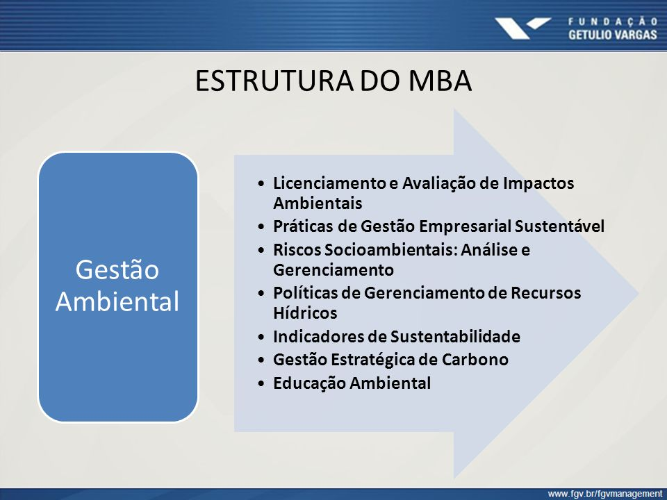 ESTRUTURA DO MBA Gestão Ambiental
