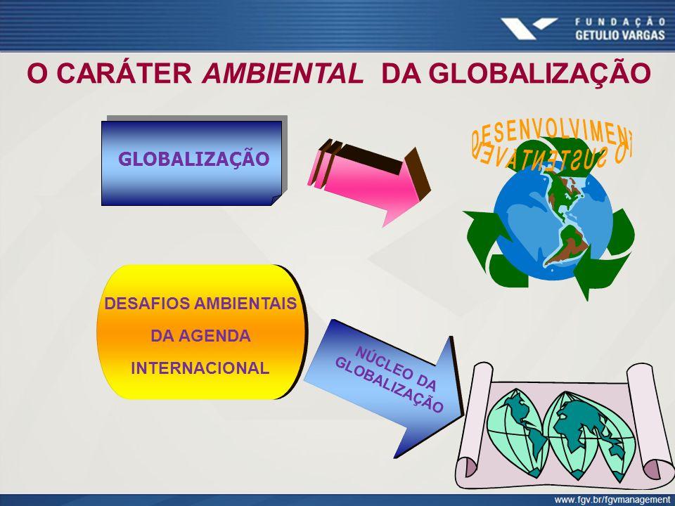 O CARÁTER AMBIENTAL DA GLOBALIZAÇÃO