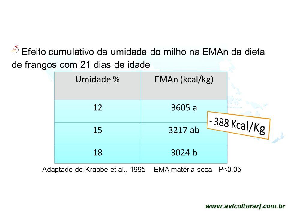 Efeito cumulativo da umidade do milho na EMAn da dieta de frangos com 21 dias de idade