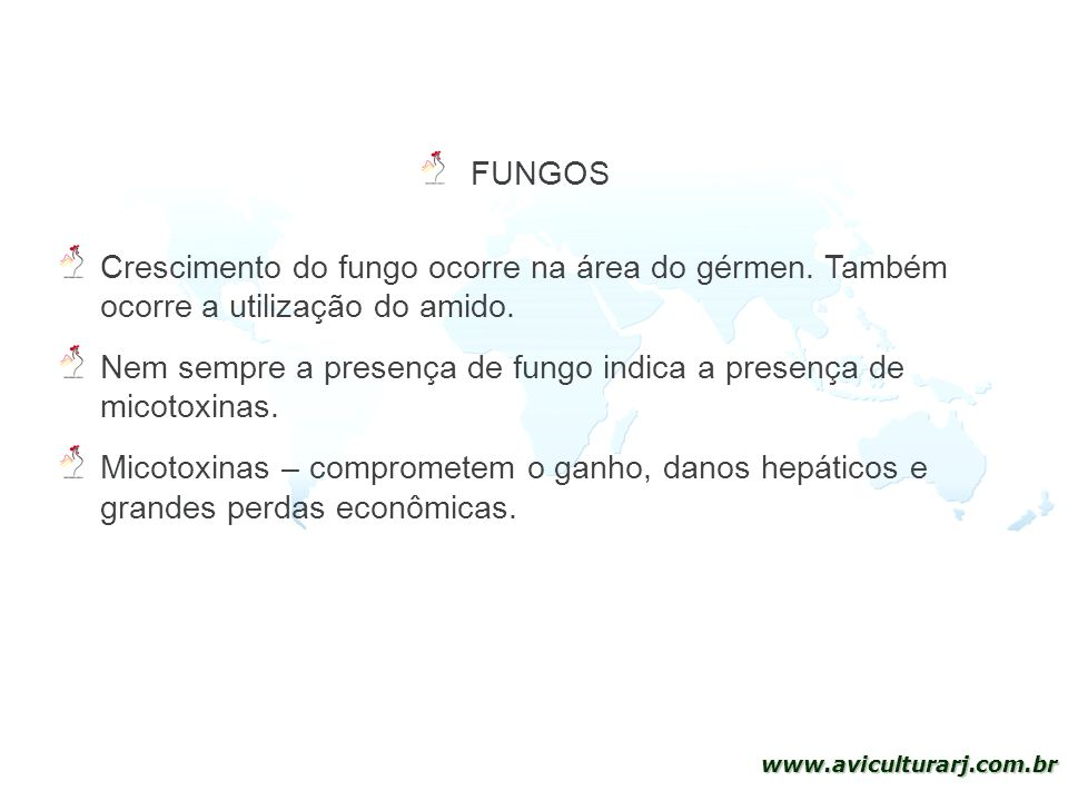 FUNGOS Crescimento do fungo ocorre na área do gérmen. Também ocorre a utilização do amido.