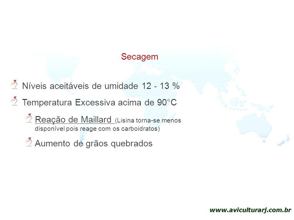 Secagem Níveis aceitáveis de umidade 12 - 13 % Temperatura Excessiva acima de 90°C.