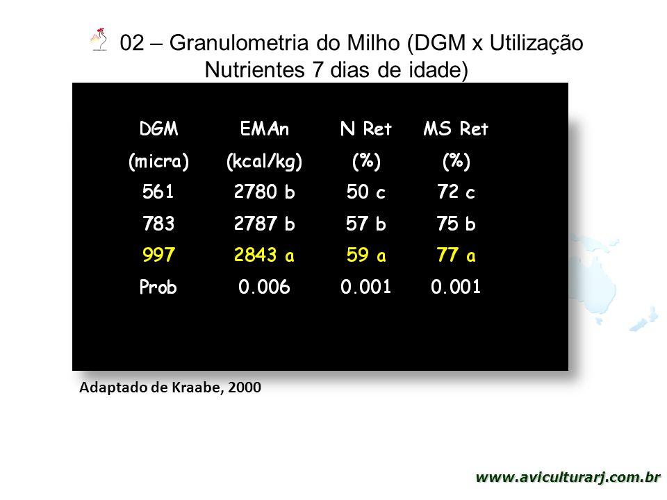 02 – Granulometria do Milho (DGM x Utilização Nutrientes 7 dias de idade)