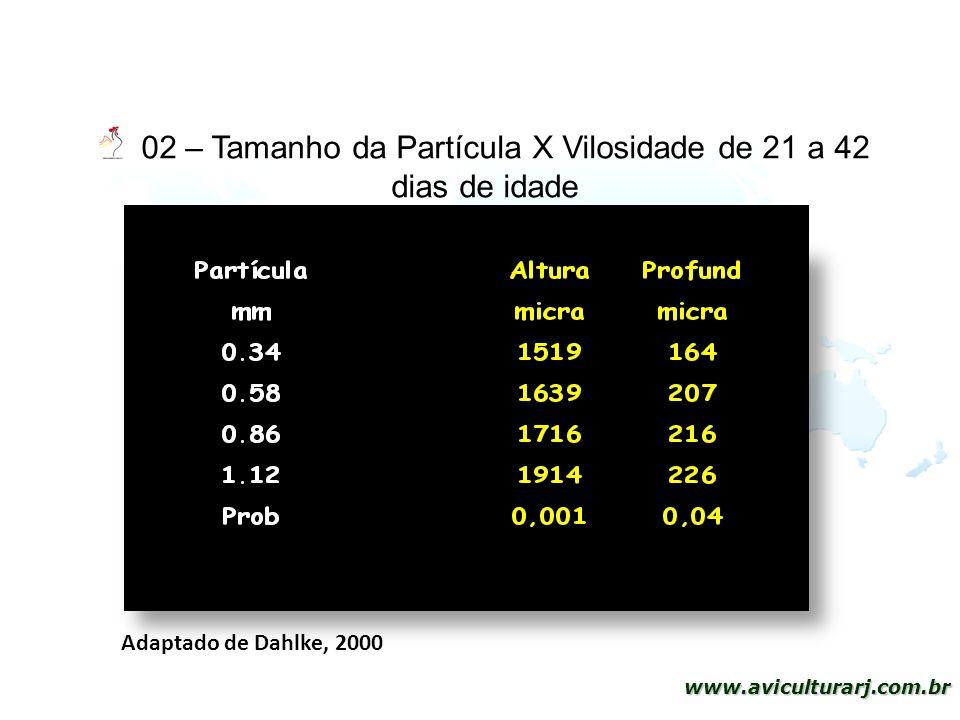 02 – Tamanho da Partícula X Vilosidade de 21 a 42 dias de idade