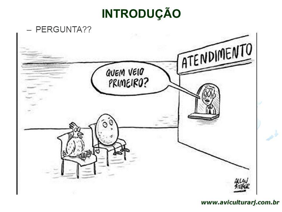 INTRODUÇÃO PERGUNTA