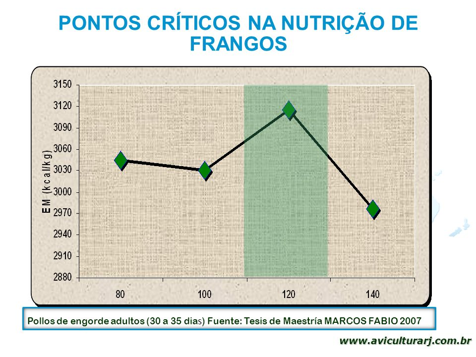 PONTOS CRÍTICOS NA NUTRIÇÃO DE FRANGOS