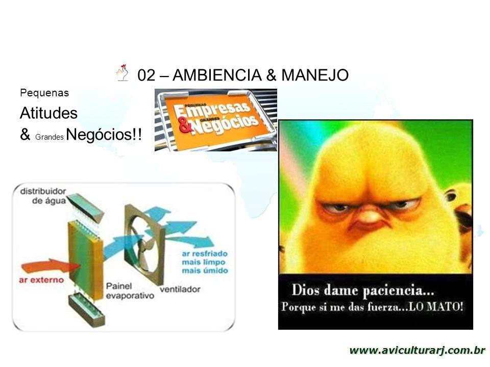 02 – AMBIENCIA & MANEJO Pequenas Atitudes & Grandes Negócios!!