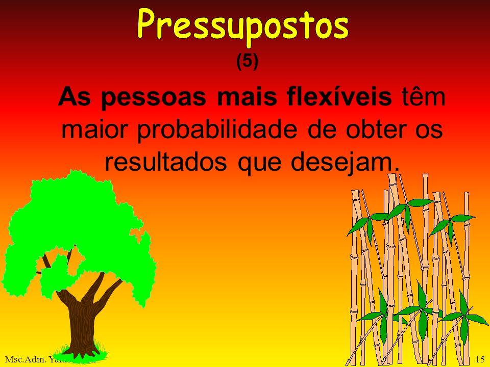Pressupostos (5) As pessoas mais flexíveis têm maior probabilidade de obter os resultados que desejam.