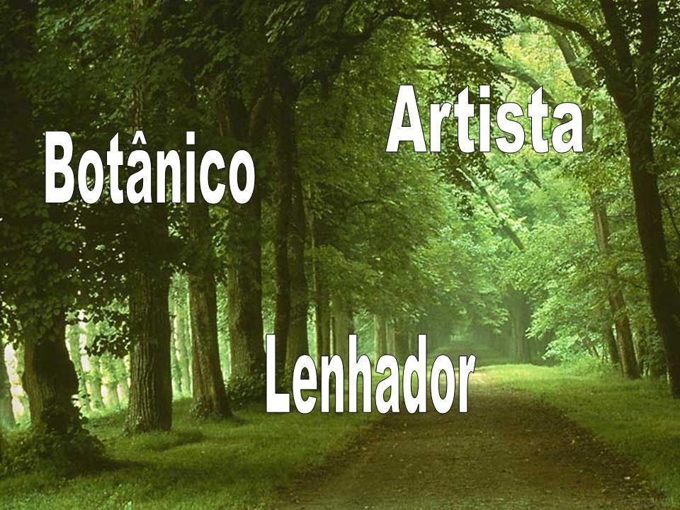 Artista Botânico Lenhador