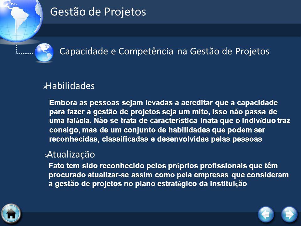 Gestão de Projetos Capacidade e Competência na Gestão de Projetos