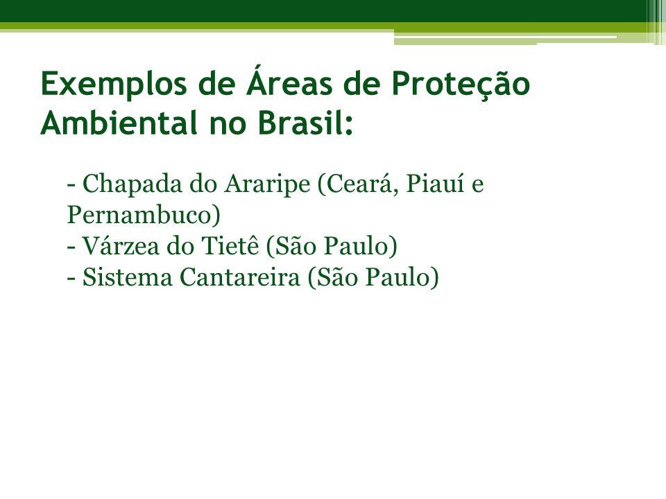 Exemplos de Áreas de Proteção Ambiental no Brasil: