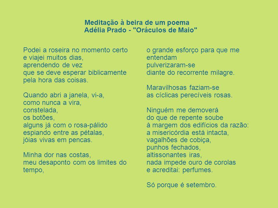 Meditação à beira de um poema Adélia Prado - Oráculos de Maio