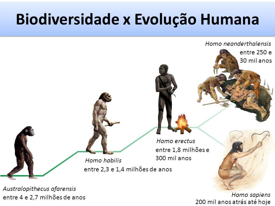 Biodiversidade x Evolução Humana