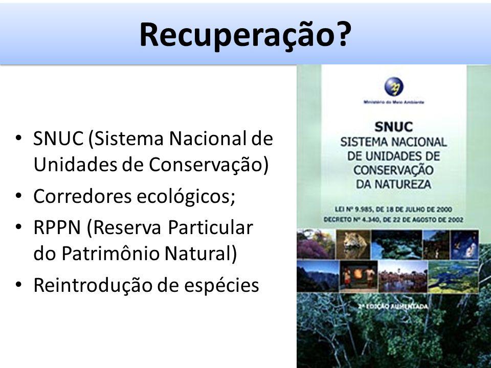Recuperação SNUC (Sistema Nacional de Unidades de Conservação)