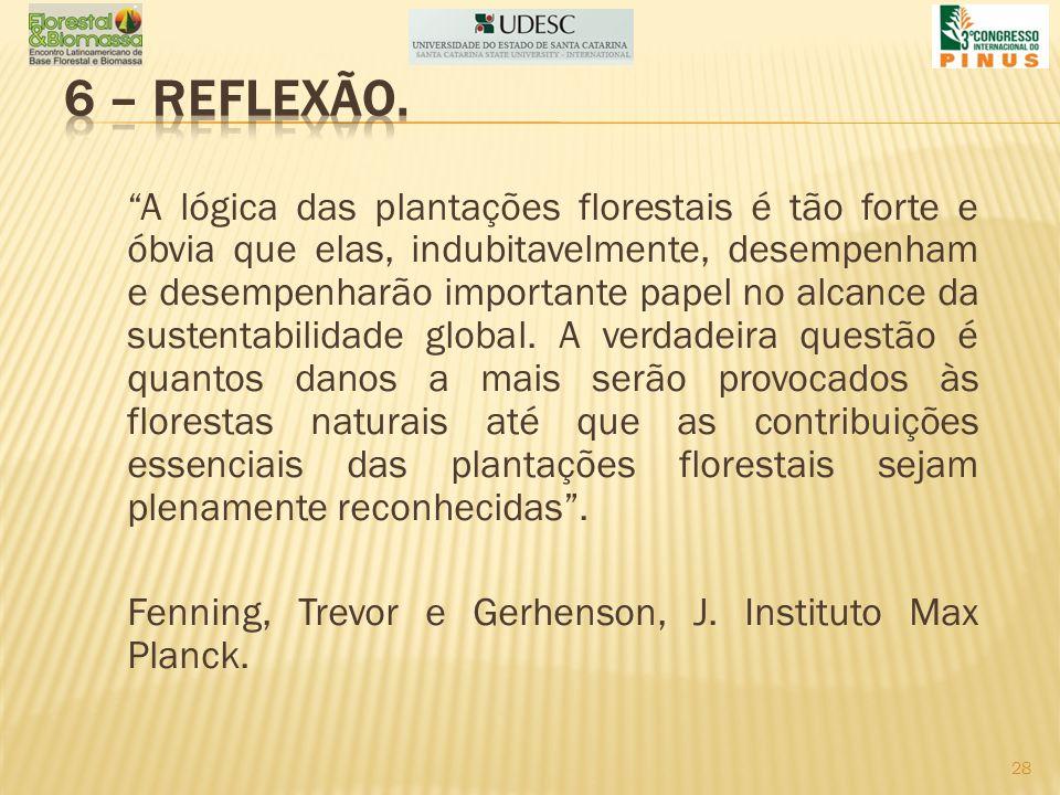 6 – REFLEXÃO.