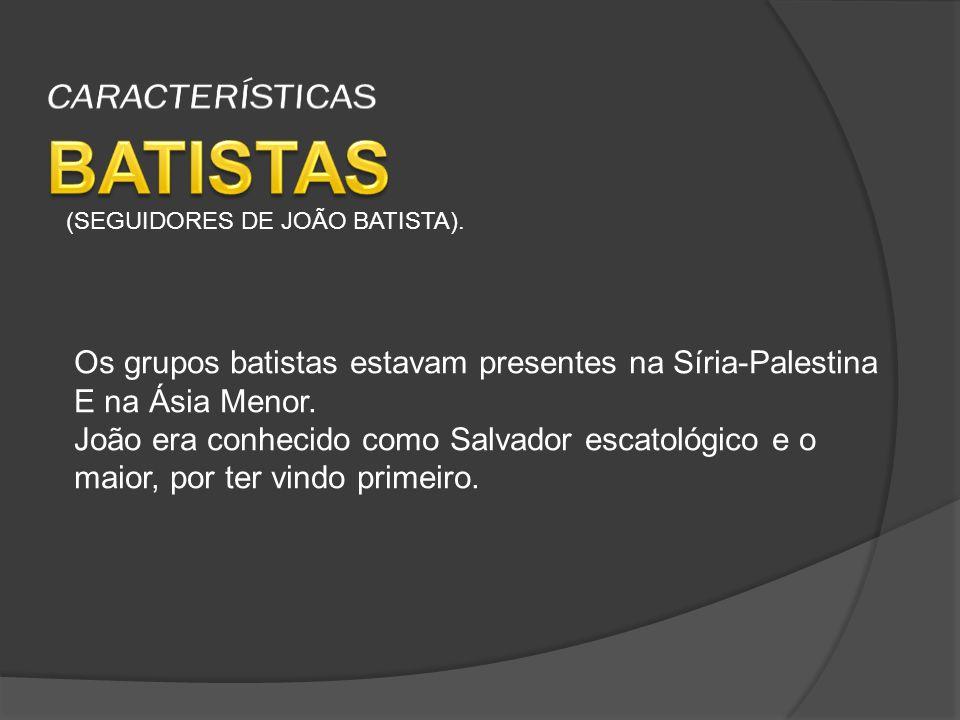 BATISTAS CARACTERÍSTICAS
