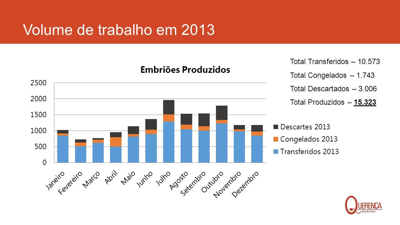 Volume de trabalho em 2013 Total Transferidos – 10.573