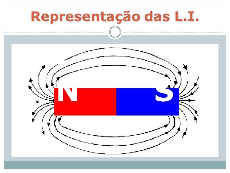 Representação das L.I. N S