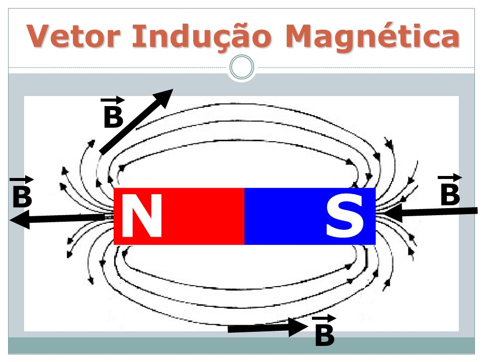 Vetor Indução Magnética