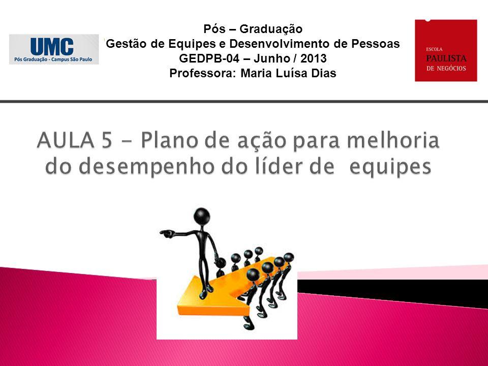 AULA 5 - Plano de ação para melhoria do desempenho do líder de equipes